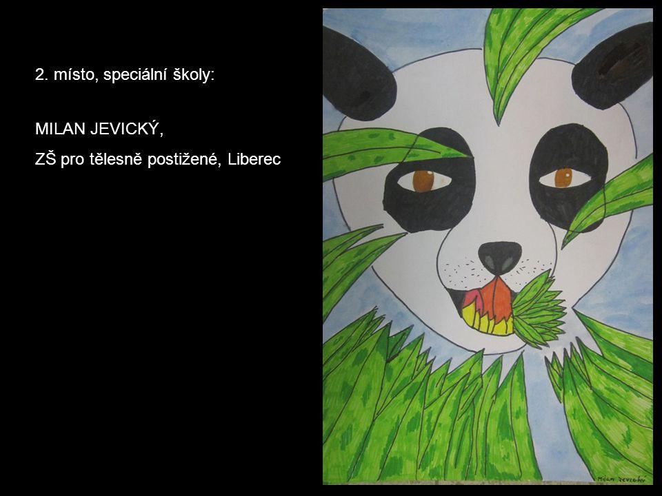 2. místo, speciální školy: MILAN JEVICKÝ, ZŠ pro tělesně postižené, Liberec