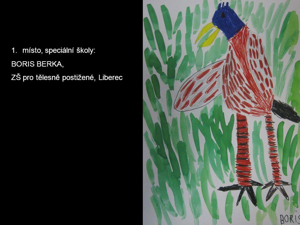 1.místo, speciální školy: BORIS BERKA, ZŠ pro tělesně postižené, Liberec