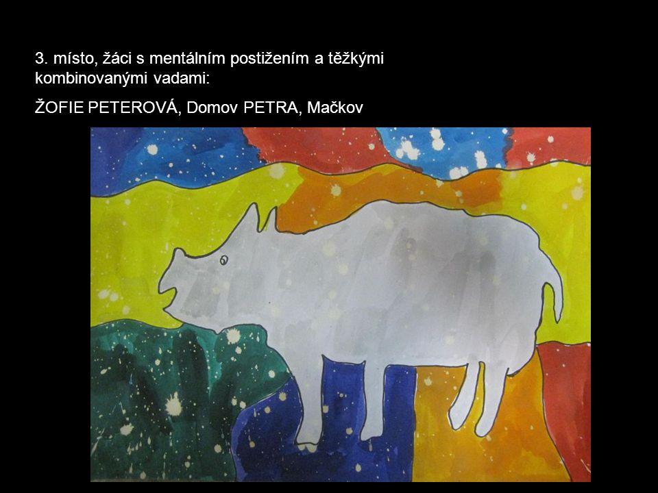 3. místo, žáci s mentálním postižením a těžkými kombinovanými vadami: ŽOFIE PETEROVÁ, Domov PETRA, Mačkov