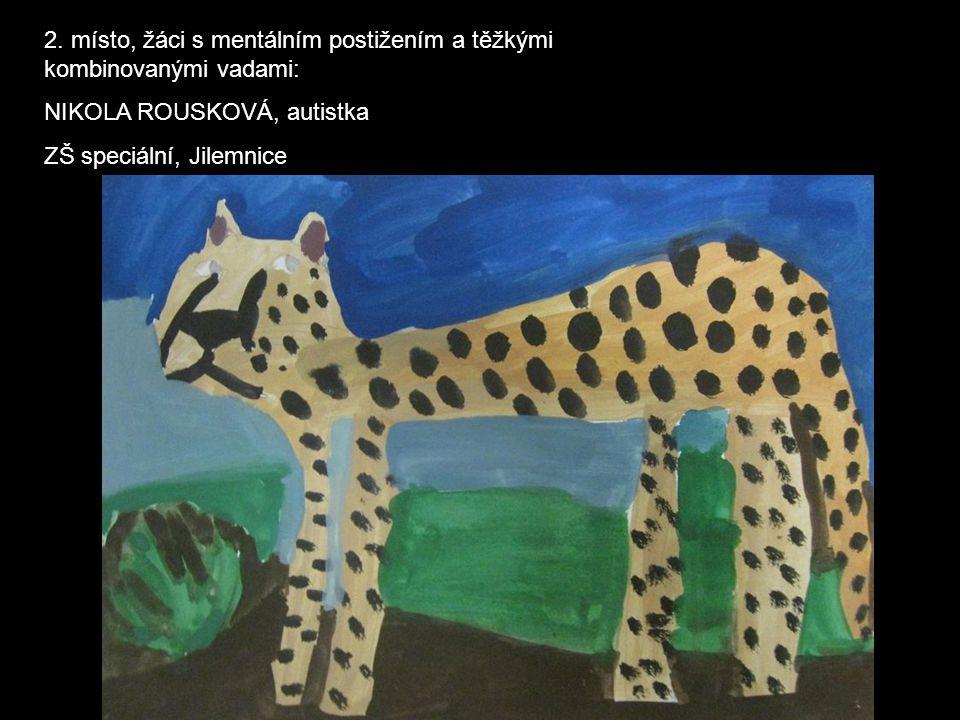 2. místo, žáci s mentálním postižením a těžkými kombinovanými vadami: NIKOLA ROUSKOVÁ, autistka ZŠ speciální, Jilemnice