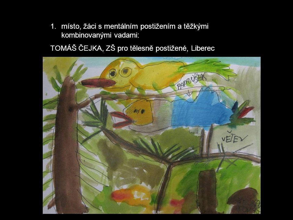 1.místo, žáci s mentálním postižením a těžkými kombinovanými vadami: TOMÁŠ ČEJKA, ZŠ pro tělesně postižené, Liberec