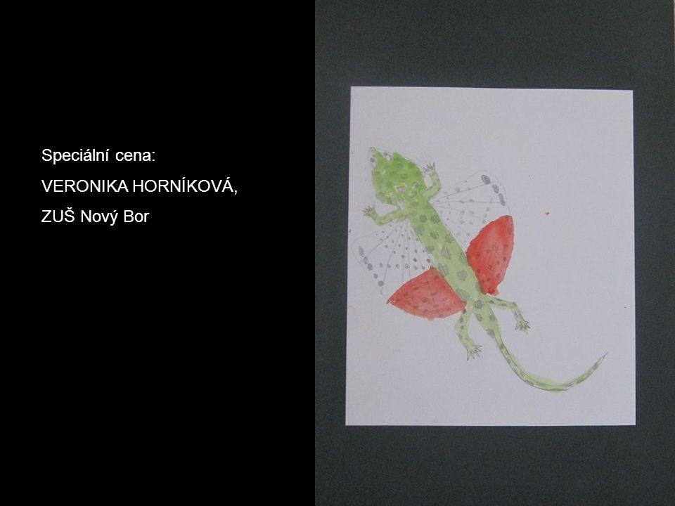 3. místo, III. Kategorie: ODŘEJ HOLUBEC, ZŠ logopedická, Liberec