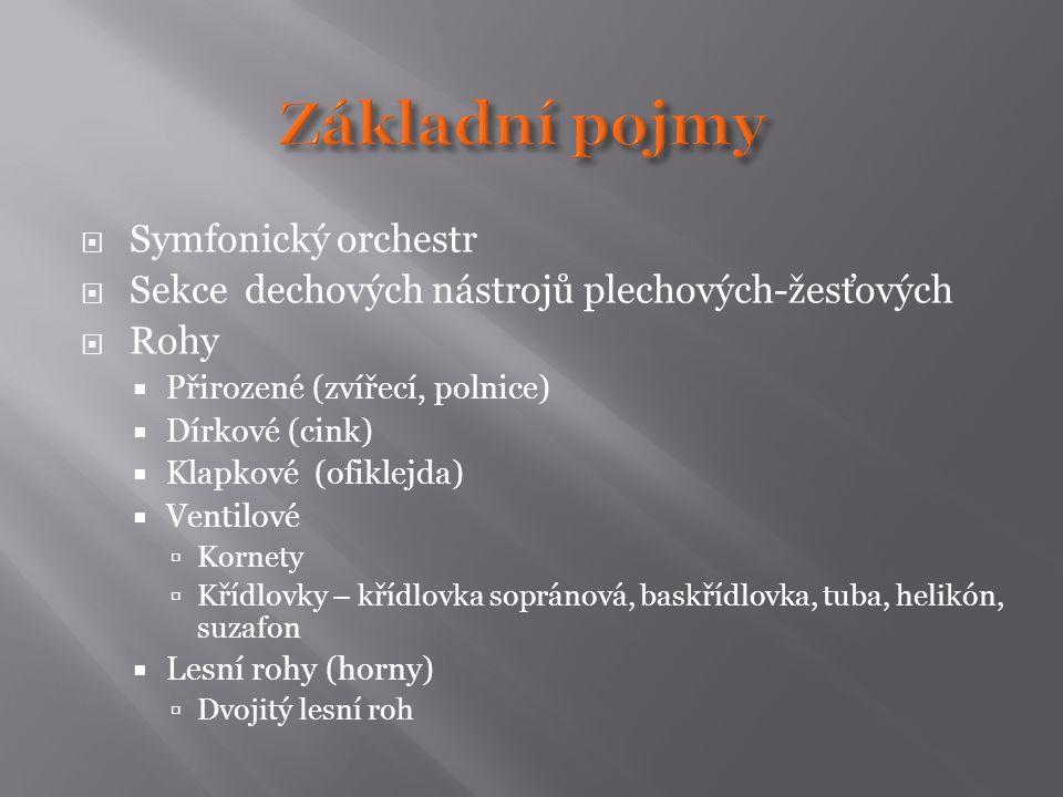  Symfonický orchestr  Sekce dechových nástrojů plechových-žesťových  Rohy  Přirozené (zvířecí, polnice)  Dírkové (cink)  Klapkové (ofiklejda)  Ventilové  Kornety  Křídlovky – křídlovka sopránová, baskřídlovka, tuba, helikón, suzafon  Lesní rohy (horny)  Dvojitý lesní roh