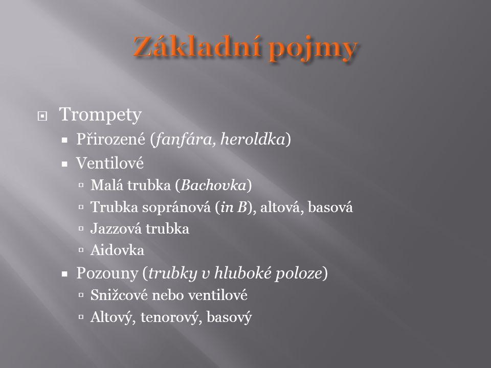  Trompety  Přirozené (fanfára, heroldka)  Ventilové  Malá trubka (Bachovka)  Trubka sopránová (in B), altová, basová  Jazzová trubka  Aidovka 