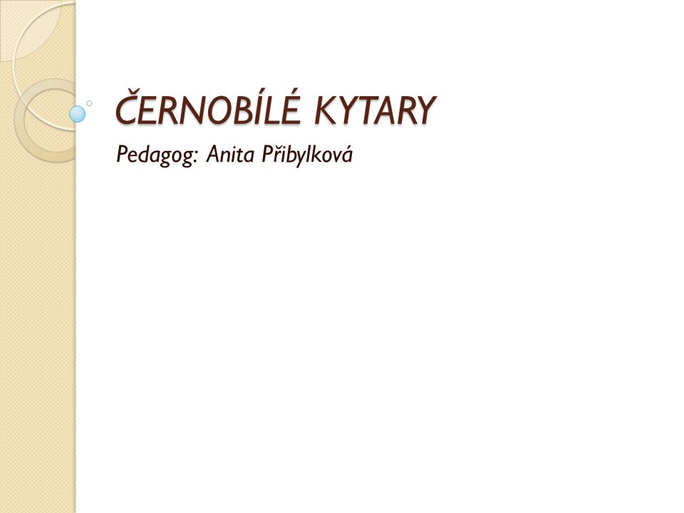 ČERNOBÍLÉ KYTARY Pedagog: Anita Přibylková