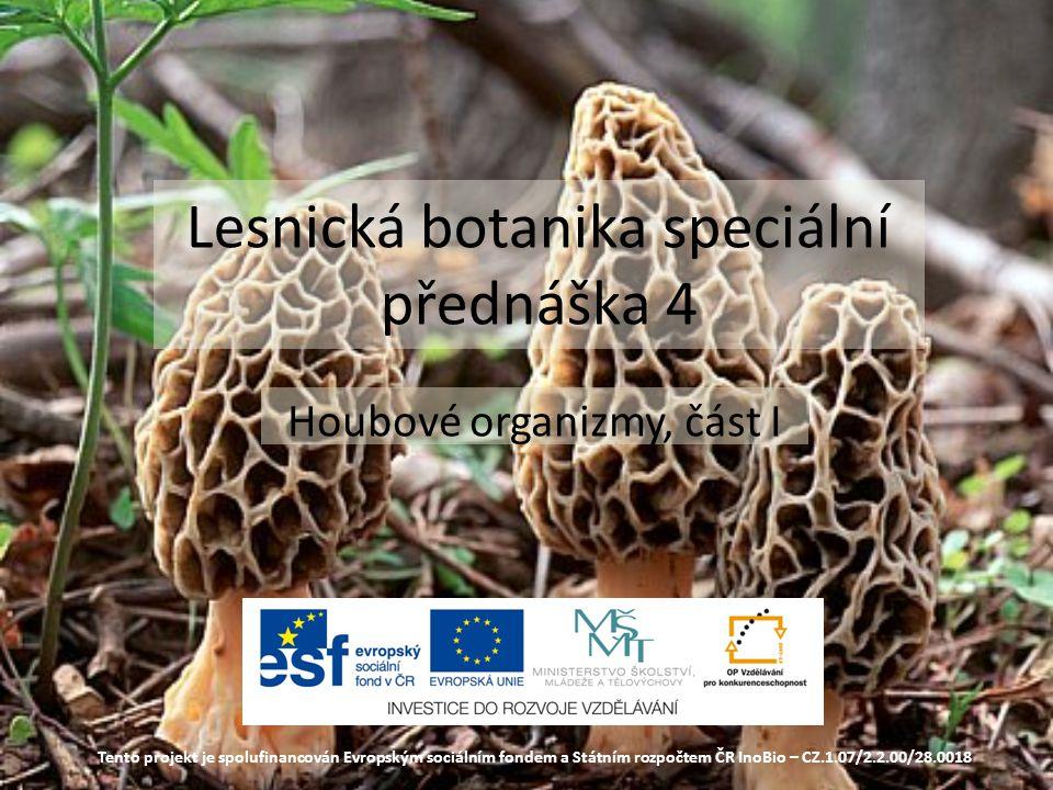Lesnická botanika speciální přednáška 4 Houbové organizmy, část I Tento projekt je spolufinancován Evropským sociálním fondem a Státním rozpočtem ČR InoBio – CZ.1.07/2.2.00/28.0018