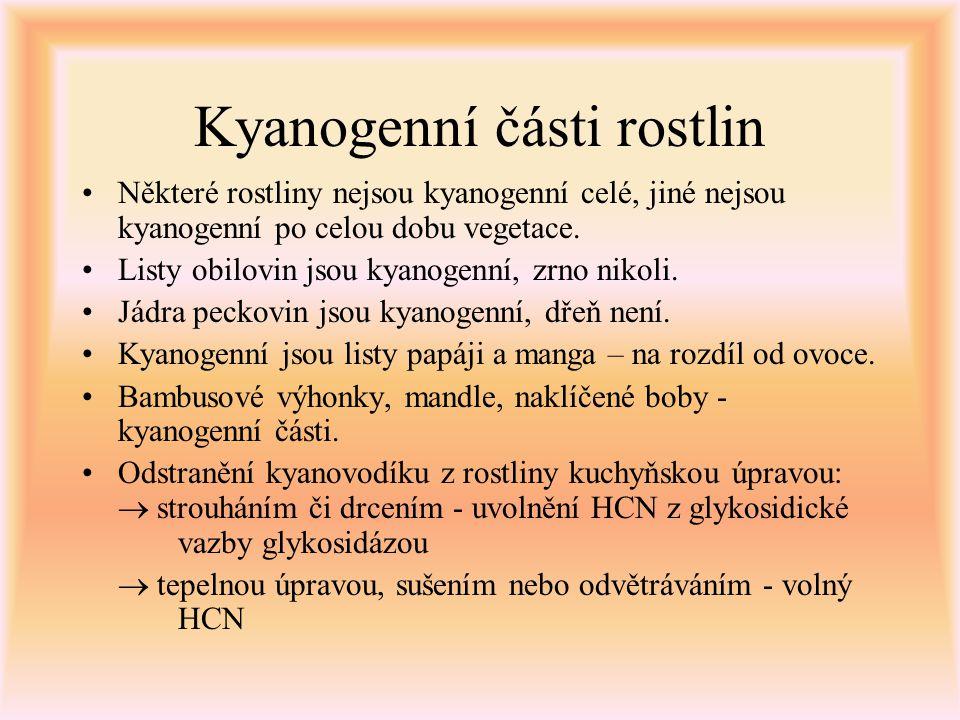 Kyanogenní části rostlin Některé rostliny nejsou kyanogenní celé, jiné nejsou kyanogenní po celou dobu vegetace. Listy obilovin jsou kyanogenní, zrno