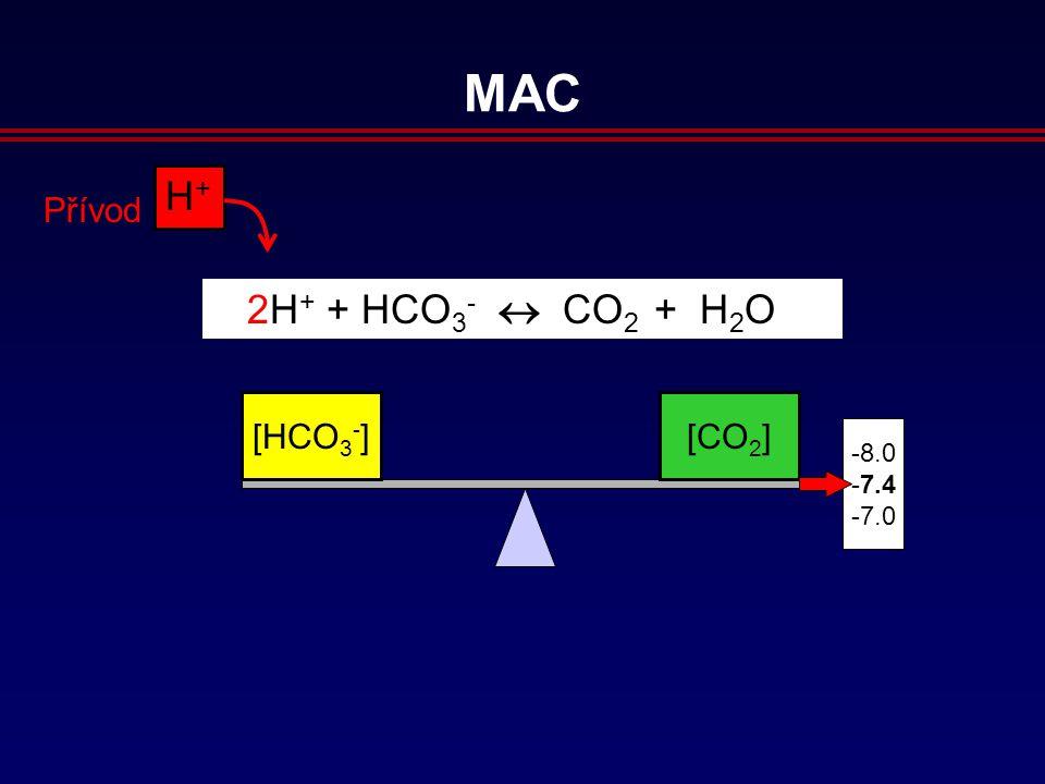 [HCO 3 - ][CO 2 ] 8.0 7.4 7.0 H+H+ Přívod 2H + + HCO 3 -  CO 2 + H 2 O MAC