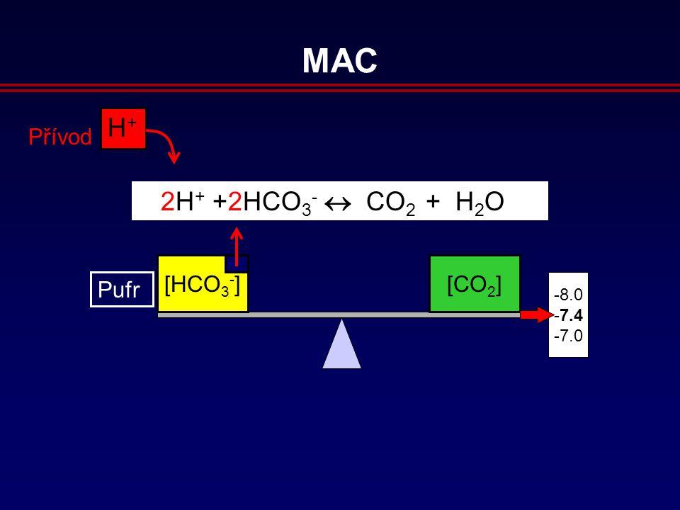 [HCO 3 - ][CO 2 ] 8.0 7.4 7.0 H+H+ Přívod 2H + +2HCO 3 -  CO 2 + H 2 O MAC Pufr