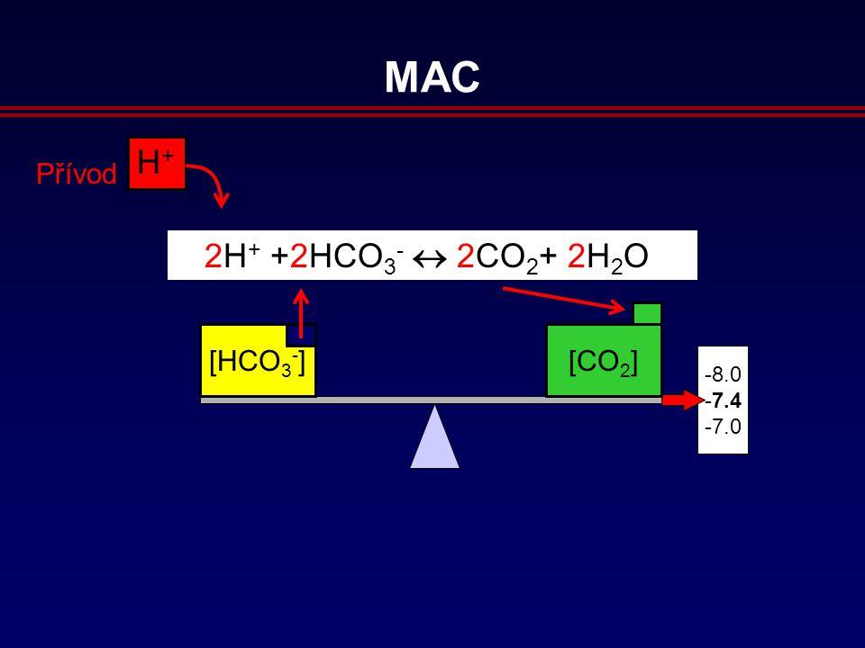 8.0 7.4 7.0 H+H+ Přívod 2H + +2HCO 3 -  2CO 2 + 2H 2 O [HCO 3 - ] [CO 2 ] MAC