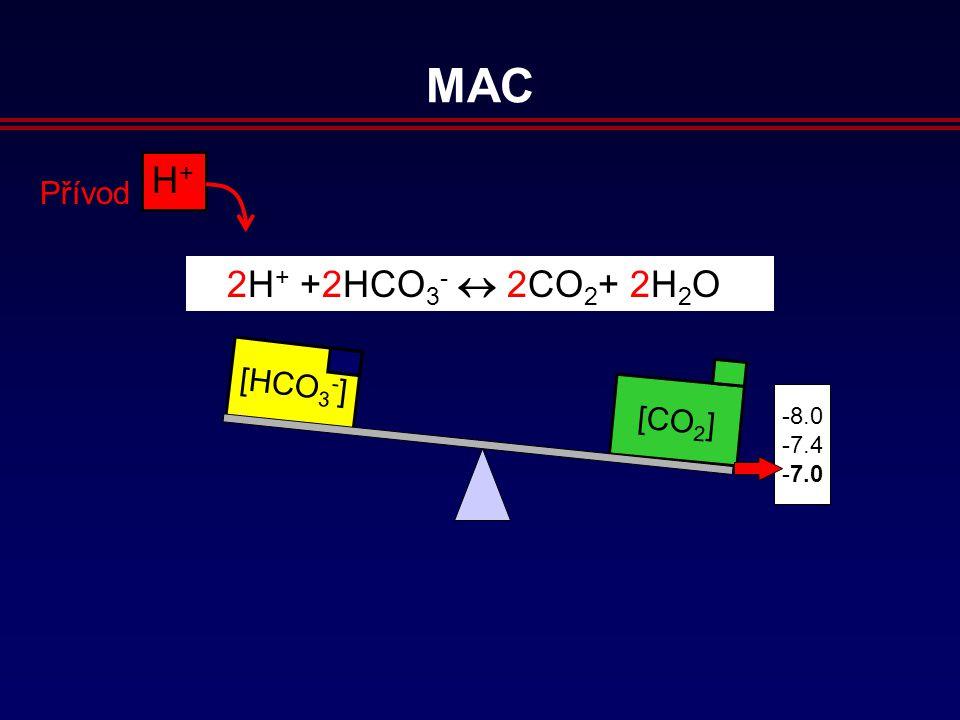 [CO 2 ] [HCO 3 - ] 8.0 7.4 7.0 H+H+ Přívod 2H + +2HCO 3 -  2CO 2 + 2H 2 O MAC