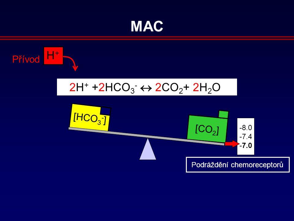 [CO 2 ] [HCO 3 - ] 8.0 7.4 7.0 H+H+ Přívod 2H + +2HCO 3 -  2CO 2 + 2H 2 O MAC Podráždění chemoreceptorů