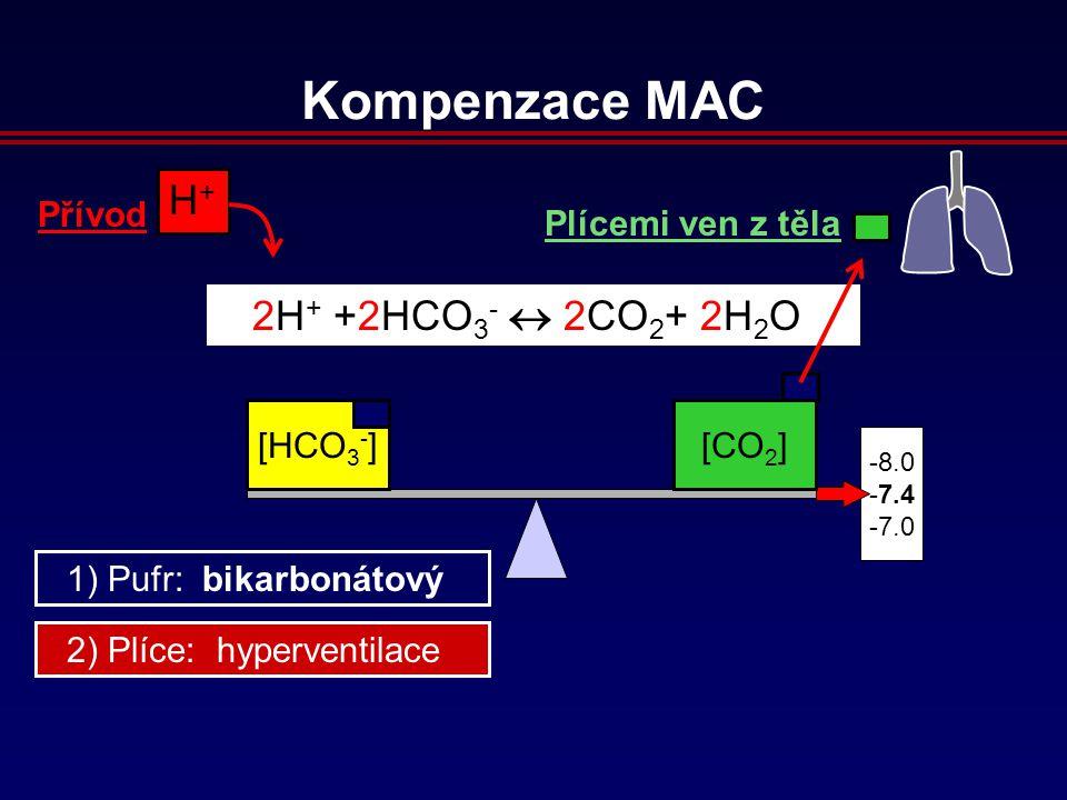 8.0 7.4 7.0 H+H+ Přívod 2H + +2HCO 3 -  2CO 2 + 2H 2 O [HCO 3 - ][CO 2 ] Plícemi ven z těla 2) Plíce: hyperventilace 1) Pufr: bikarbonátový Kompenzace MAC