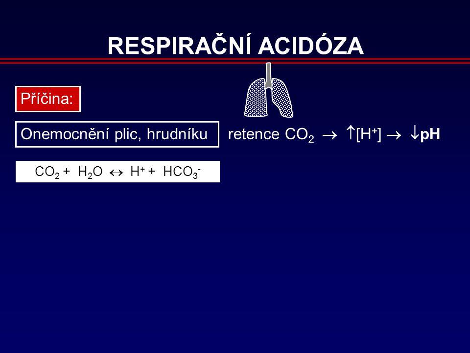 RESPIRAČNÍ ACIDÓZA Příčina: Onemocnění plic, hrudníku retence CO 2 CO 2 + H 2 O  H + + HCO 3 -   [H + ]   pH