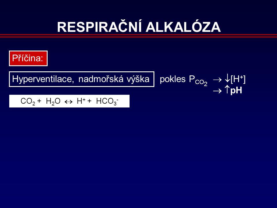 RESPIRAČNÍ ALKALÓZA Příčina: Hyperventilace, nadmořská výška pokles P CO 2   [H + ]   pH CO 2 + H 2 O  H + + HCO 3 -