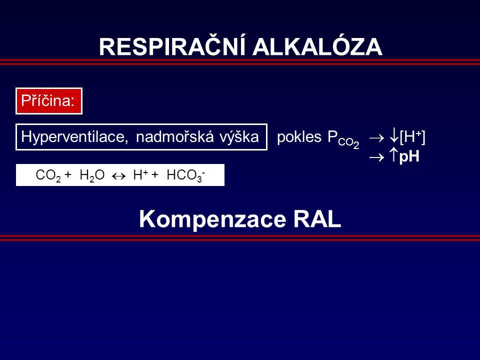 RESPIRAČNÍ ALKALÓZA Příčina: Hyperventilace, nadmořská výška pokles P CO 2   [H + ]   pH CO 2 + H 2 O  H + + HCO 3 - Kompenzace RAL