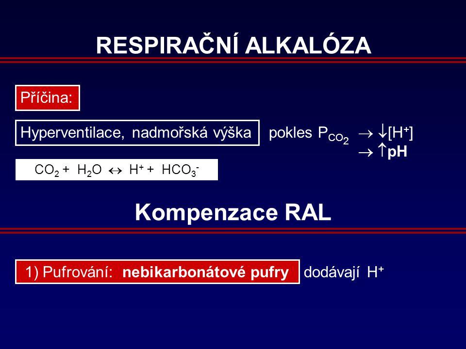 RESPIRAČNÍ ALKALÓZA Příčina: Hyperventilace, nadmořská výška pokles P CO 2   [H + ]   pH CO 2 + H 2 O  H + + HCO 3 - Kompenzace RAL 1) Pufrování: nebikarbonátové pufry dodávají H +