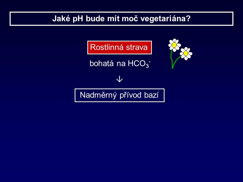 Jaké pH bude mít moč vegetariána? Rostlinná strava bohatá na HCO 3 - Nadměrný přívod bazí 