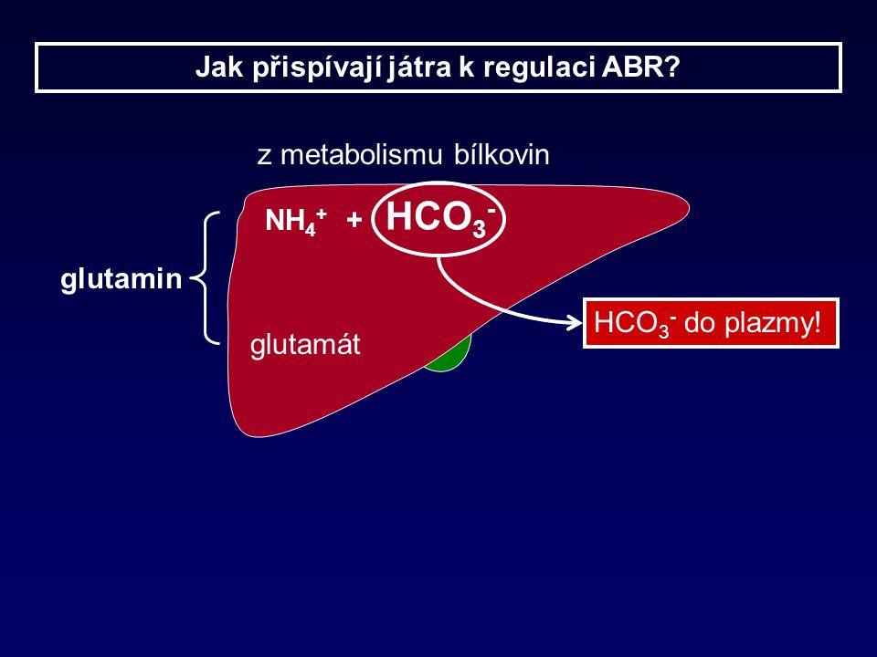 Jak přispívají játra k regulaci ABR.