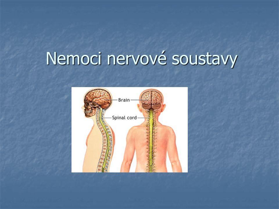 Opakování Jaká je funkce nervové soustavy.Jaká je funkce nervové soustavy.