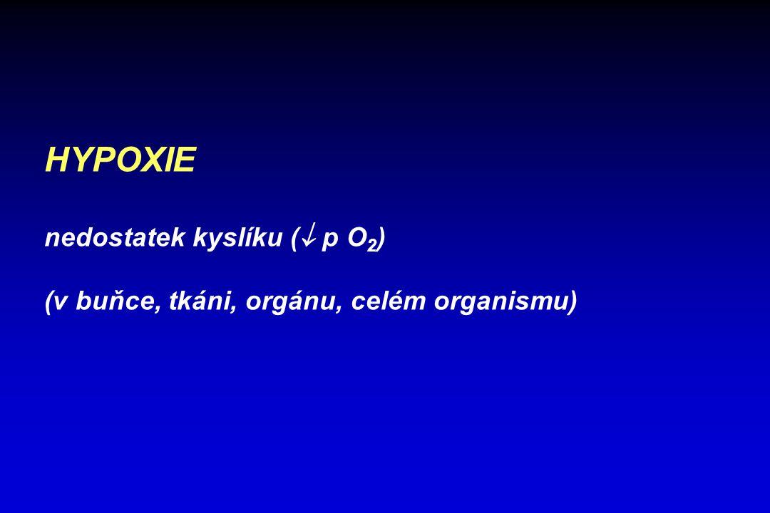 HYPOXIE nedostatek kyslíku (  p O 2 ) (v buňce, tkáni, orgánu, celém organismu)