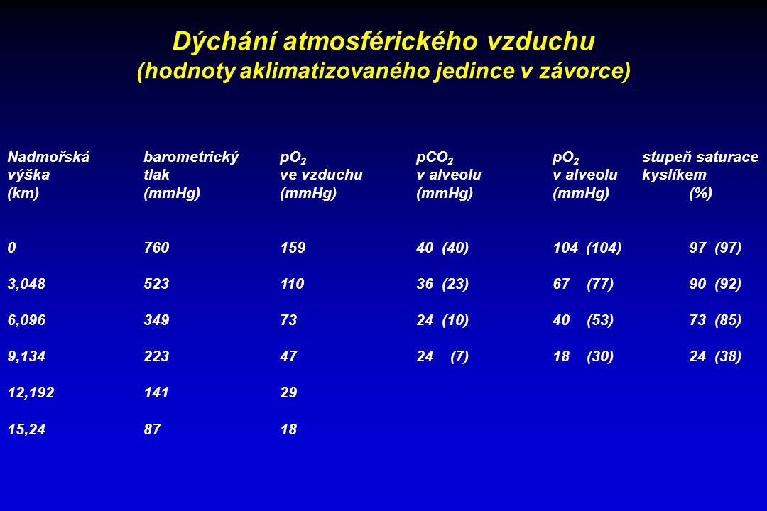 Dýchání atmosférického vzduchu (hodnoty aklimatizovaného jedince v závorce) NadmořskábarometrickýpO 2 pCO 2 pO 2 stupeň saturace výškatlakve vzduchuv alveoluv alveolu kyslíkem (km)(mmHg)(mmHg)(mmHg)(mmHg)(%) 076015940 (40)104 (104)97 (97) 3,04852311036 (23)67 (77)90 (92) 6,0963497324 (10)40 (53)73 (85) 9,1342234724 (7)18 (30)24 (38) 12,19214129 15,248718