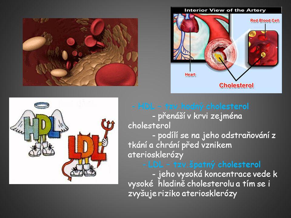 - HDL – tzv.hodný cholesterol - přenáší v krvi zejména cholesterol - podílí se na jeho odstraňování z tkání a chrání před vznikem ateriosklerózy - LDL