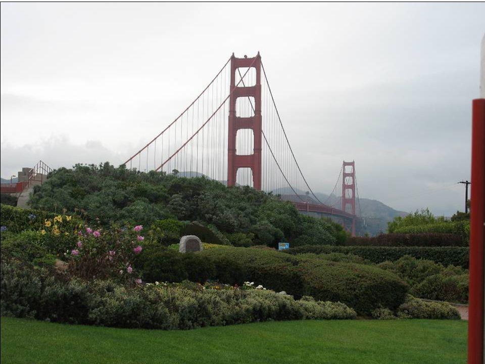Je to kosmopolitní město podmanivého kouzla a atmosféry, ležící na severním hrotu pahorkatého poloostrova v obrovské zátoce San Francisco Bay. Bylo za