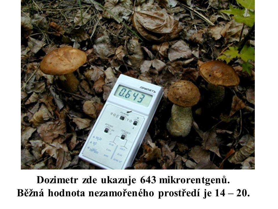 Dozimetr zde ukazuje 643 mikrorentgenů. Běžná hodnota nezamořeného prostředí je 14 – 20.