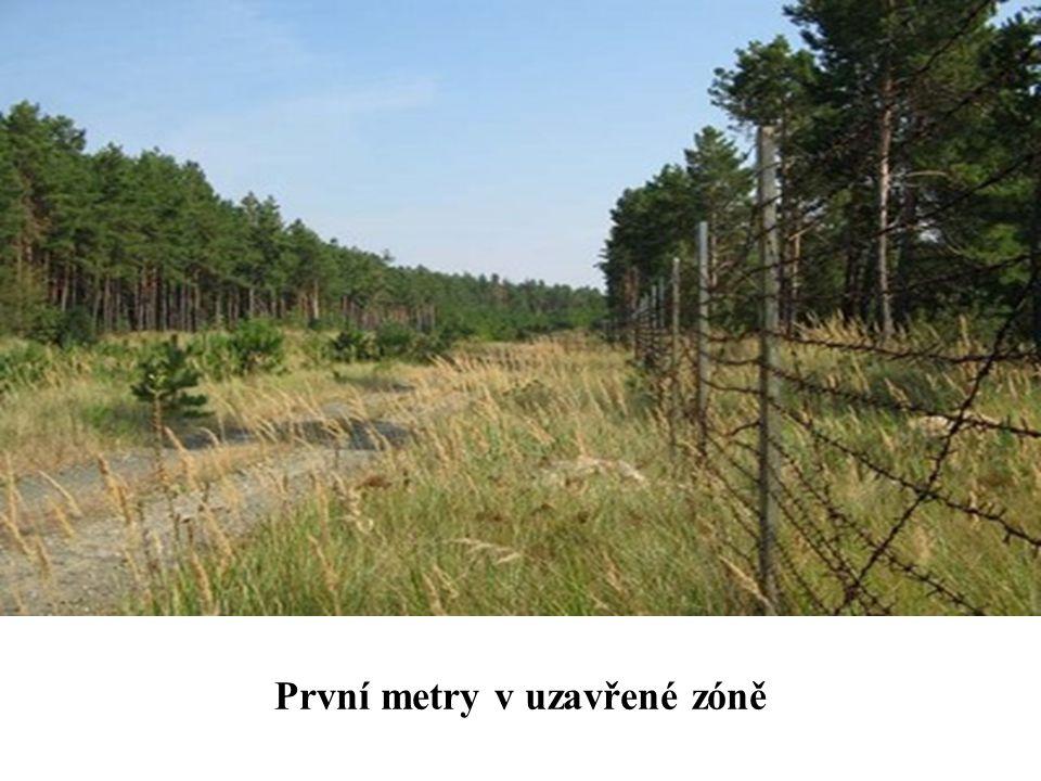 Opuštěné stavení cestou v 30 km uzavřené zóně. Je jich tu řada včetně mnoha vesnic