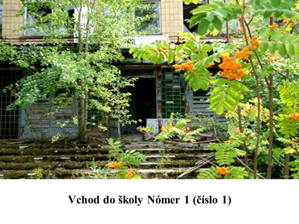 Vchod do školy Nómer 1 (číslo 1)