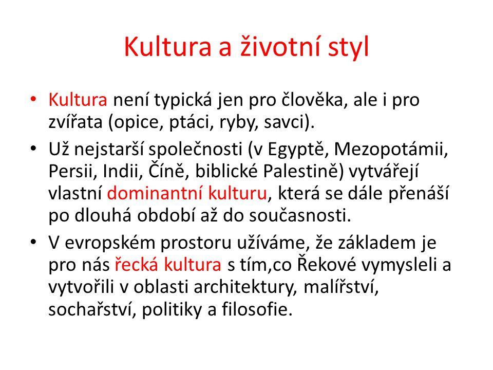 Kultura a životní styl Kulturu později rozšiřuje např.