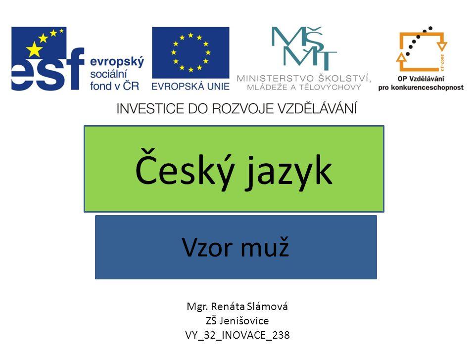 Vzor muž Český jazyk Mgr. Renáta Slámová ZŠ Jenišovice VY_32_INOVACE_238