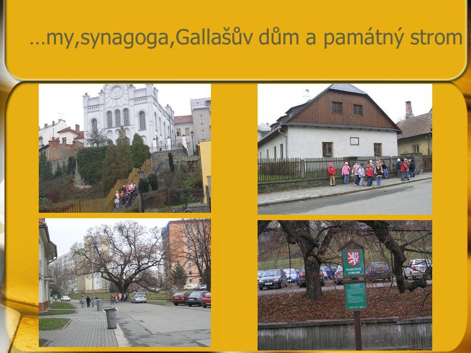 …my,synagoga,Gallašův dům a památný strom