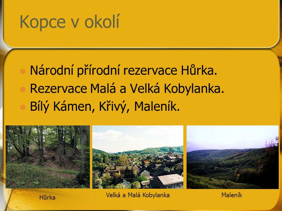 Kopce v okolí Národní přírodní rezervace Hůrka. Rezervace Malá a Velká Kobylanka. Bílý Kámen, Křivý, Maleník. Hůrka Velká a Malá KobylankaMaleník