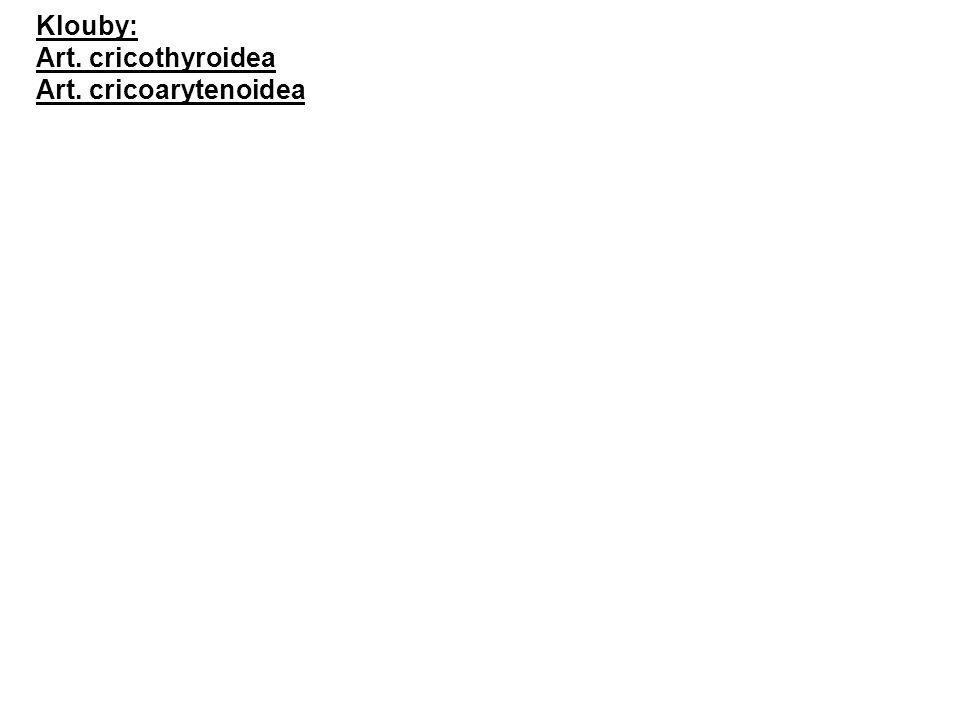 Klouby: Art. cricothyroidea Art. cricoarytenoidea
