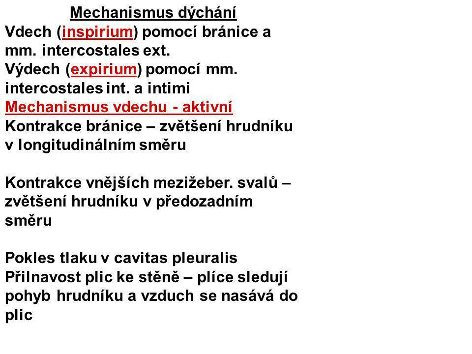 Mechanismus dýchání Vdech (inspirium) pomocí bránice a mm. intercostales ext. Výdech (expirium) pomocí mm. intercostales int. a intimi Mechanismus vde
