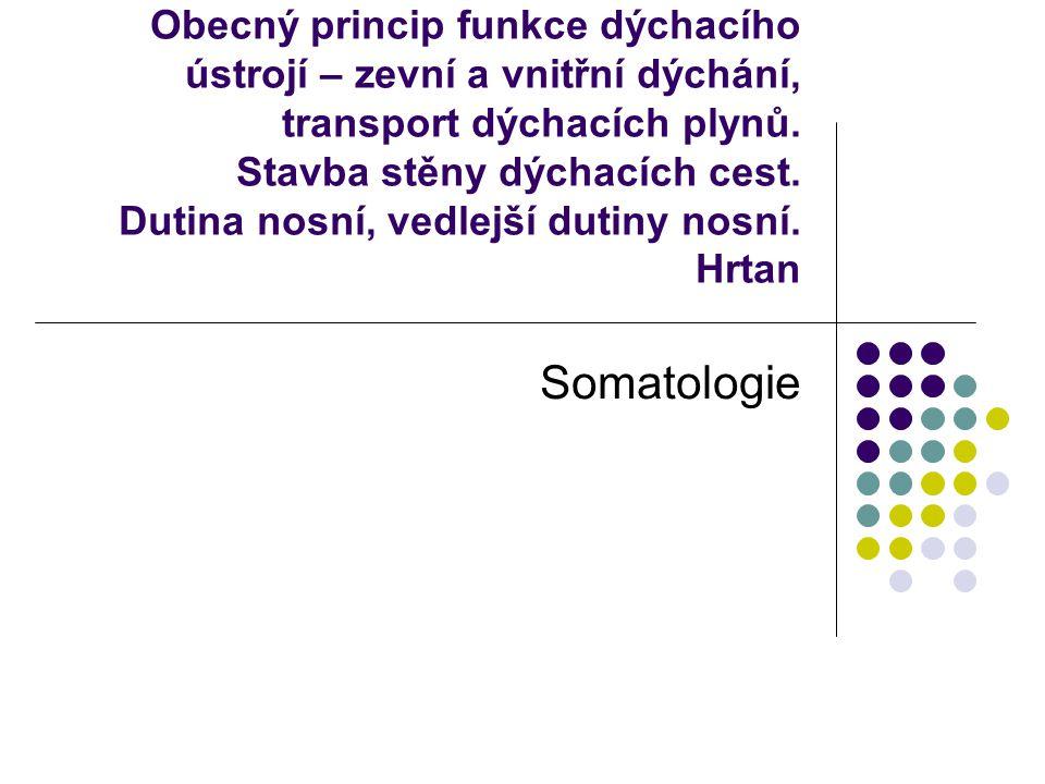 Dýchací systém – systema respiratorium I.