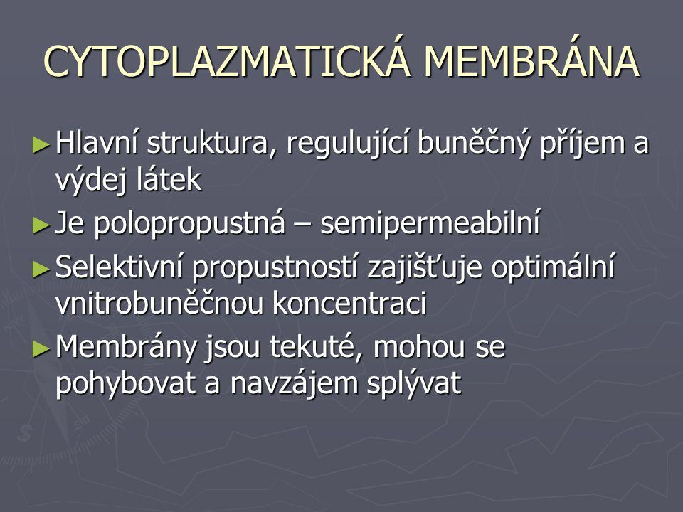 MEMBRÁNOVÝ TRANSPORT 1) Volná difúze ► Závisí jen na fyzikálních vlastnostech membrán ► Zvláštním způsobem je difúze molekul vody přes membránu = osmóza 2) Všechny typy membránových transportů ► Transport je závislý na funkci transportních membránových přenašečů ► Pasivní přenašečový transport ► Aktivní přenašečový transport 3) Cytóza ► Transportu se účastní celé velké části membrán ► Exocytóza a endocytóza