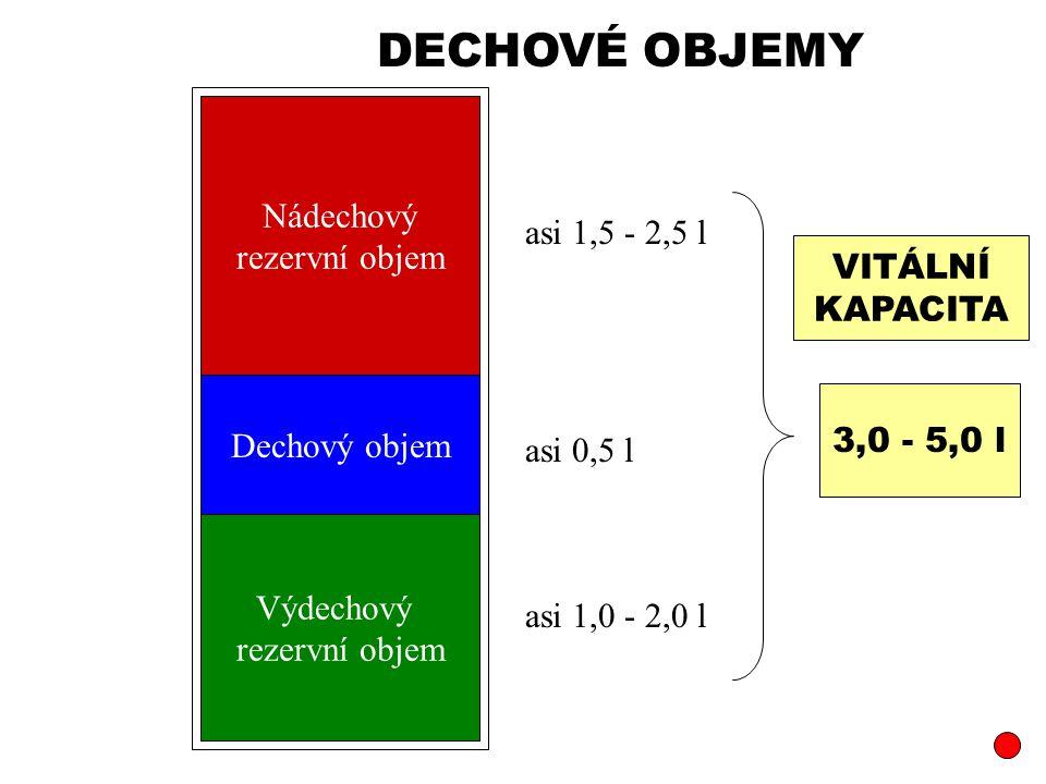 Dechový objem Nádechový rezervní objem Výdechový rezervní objem asi 0,5 l asi 1,5 - 2,5 l asi 1,0 - 2,0 l 3,0 - 5,0 l VITÁLNÍ KAPACITA DECHOVÉ OBJEMY