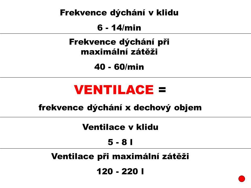 Frekvence dýchání v klidu 6 - 14/min Frekvence dýchání při maximální zátěži 40 - 60/min VENTILACE = frekvence dýchání x dechový objem Ventilace v klidu 5 - 8 l Ventilace při maximální zátěži 120 - 220 l