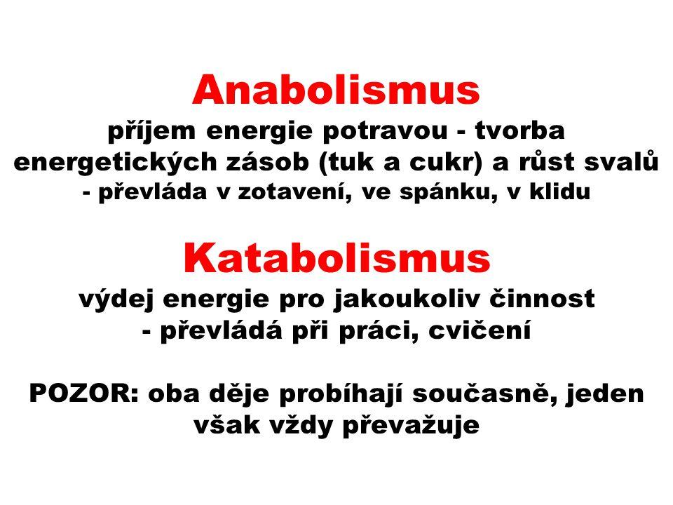 Anabolismus příjem energie potravou - tvorba energetických zásob (tuk a cukr) a růst svalů - převláda v zotavení, ve spánku, v klidu Katabolismus výde