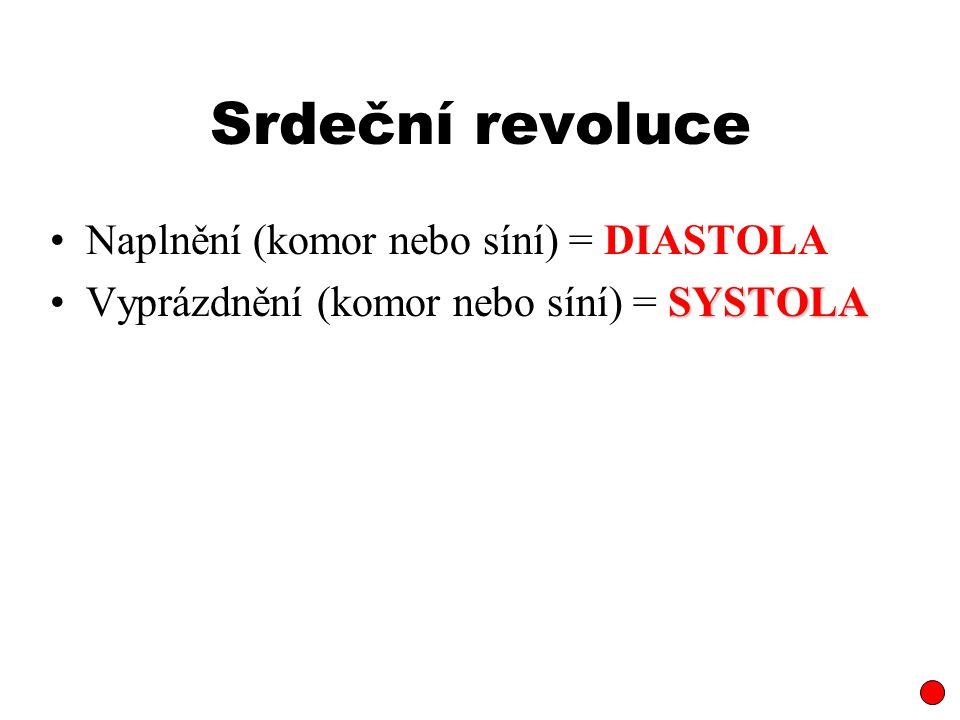 Srdeční revoluce Naplnění (komor nebo síní) = DIASTOLA Vyprázdnění (komor nebo síní) = SYSTOLA