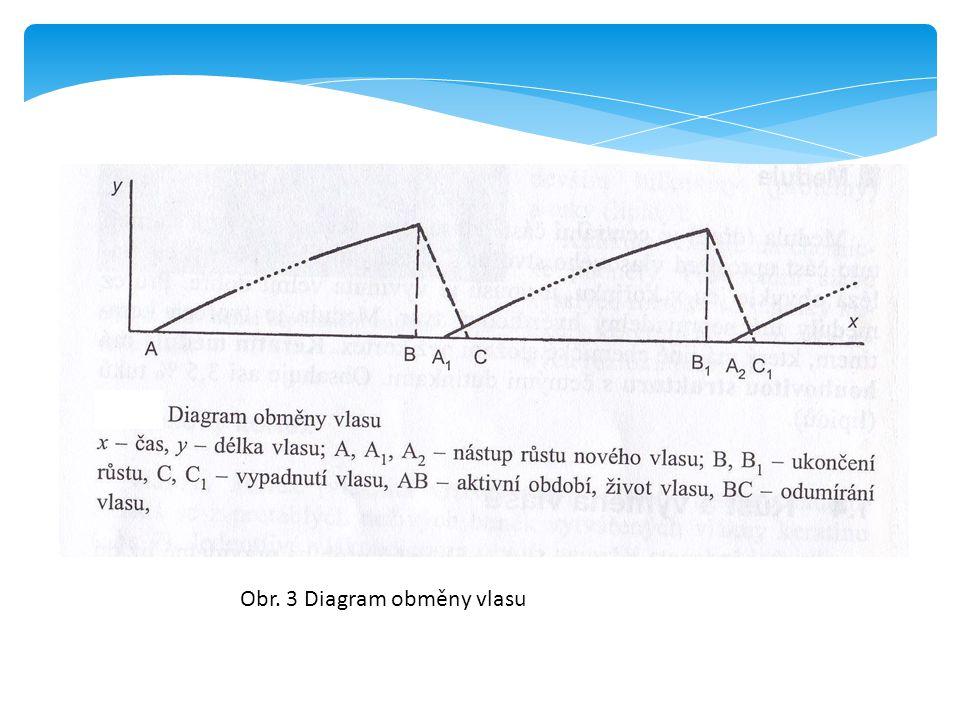 Obr. 3 Diagram obměny vlasu