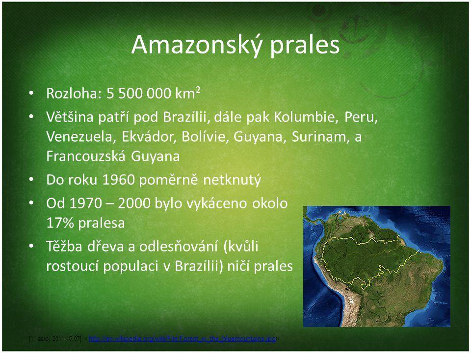 Amazonský prales Rozloha: 5 500 000 km 2 Většina patří pod Brazílii, dále pak Kolumbie, Peru, Venezuela, Ekvádor, Bolívie, Guyana, Surinam, a Francouz