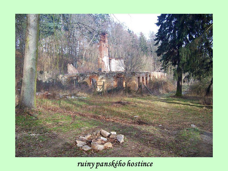 vlevo vzadu vidíme ruiny panského hostince kam se půjdeme podívat