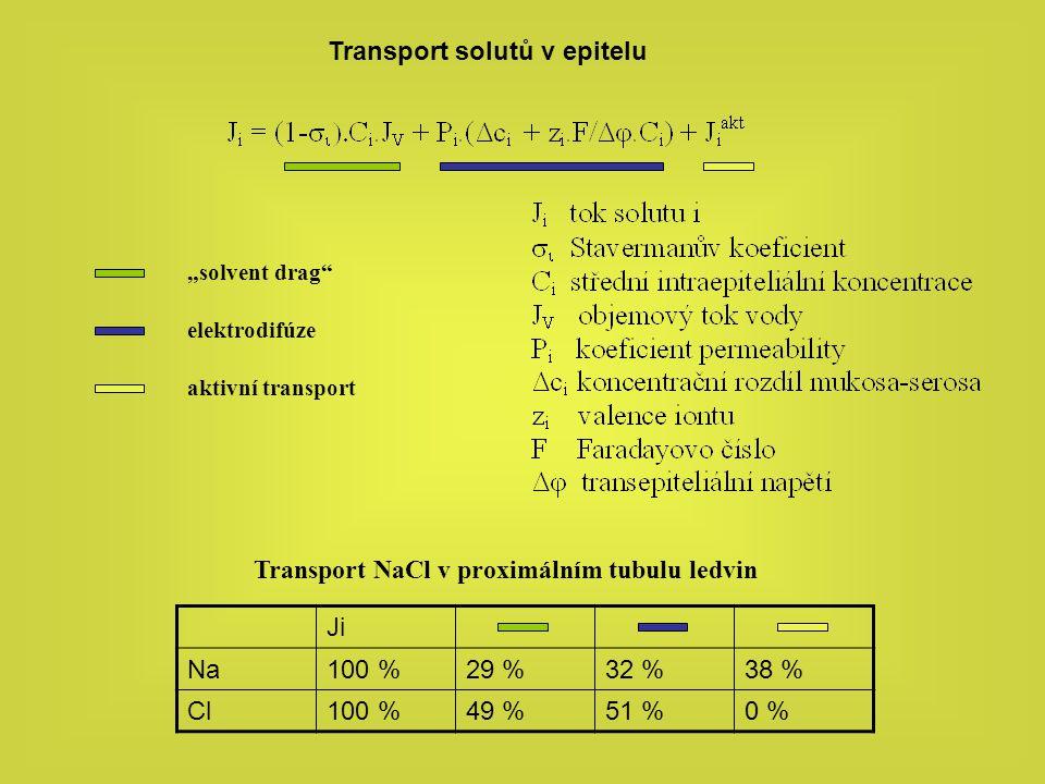 """Transport solutů v epitelu """"solvent drag"""" elektrodifúze aktivní transport Ji Na100 %29 %32 %38 % Cl100 %49 %51 %0 % Transport NaCl v proximálním tubul"""
