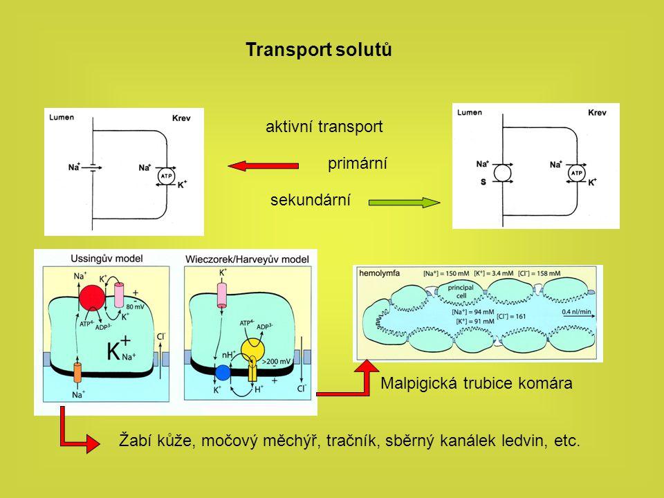 Vodivosti epiteliální buňky vliv hypotonického stresu na vodivost membrány iontové vodivosti membrány, membránový potenciál Barium a DIDS senzitivní vodivost je indukována hypotonickým stresem