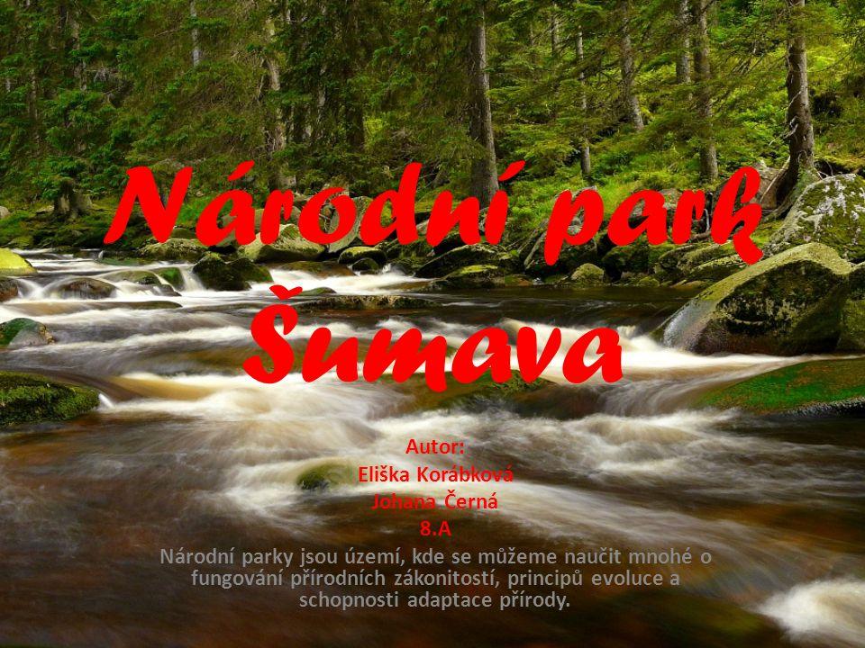 Národní park Šumava Autor: Eliška Korábková Johana Černá 8.A Národní parky jsou území, kde se můžeme naučit mnohé o fungování přírodních zákonitostí,