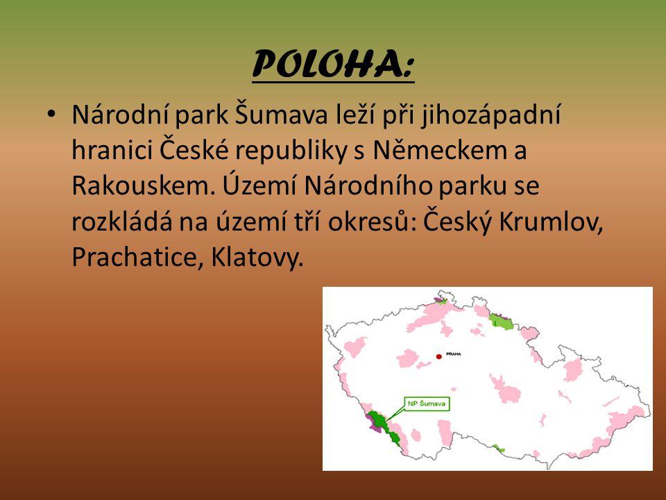 POLOHA: Národní park Šumava leží při jihozápadní hranici České republiky s Německem a Rakouskem. Území Národního parku se rozkládá na území tří okresů